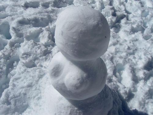 Snowtranny