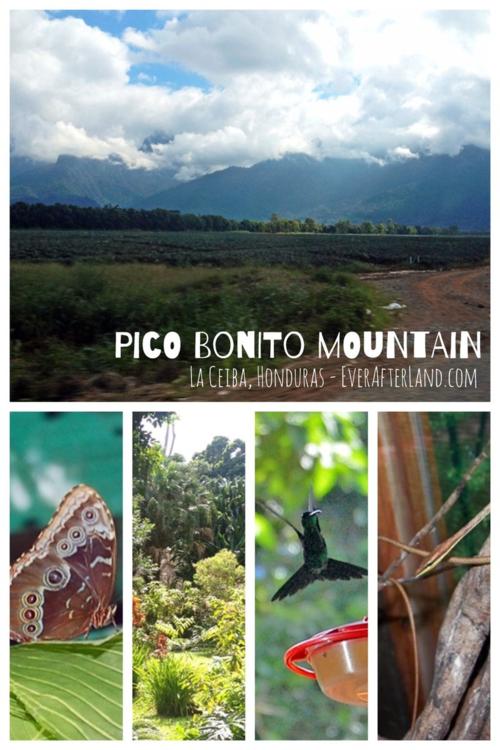 Pico Bonito Mountain, La Ceiba, Honduras