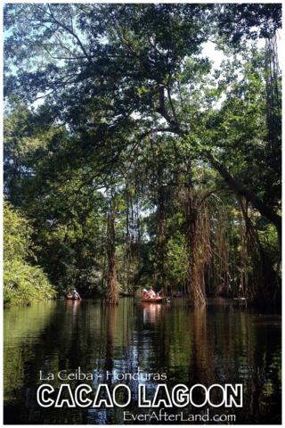 Kayaking with Kids in Cacao Lagoon, La Ceiba, Honduras