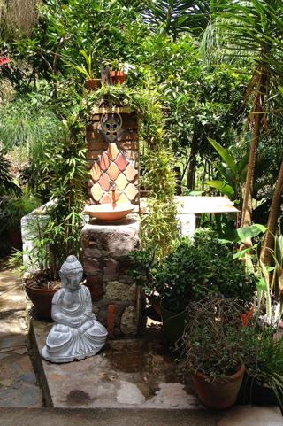 Garden at the tea house, Santa Lucia, Honduras