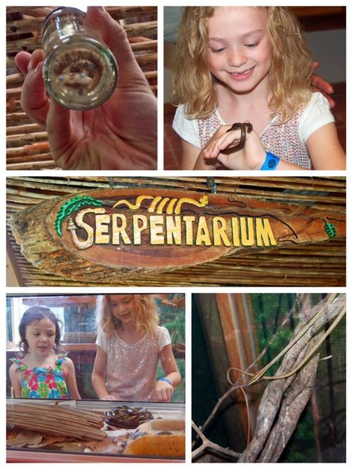 Serpentarium at Pico Bonito, La Ceiba, Honduras