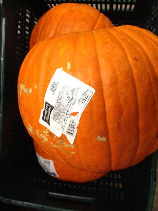 Halloween pumpkin in Honduras