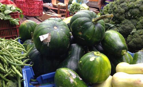 Honduran Green Pumpkin Squash